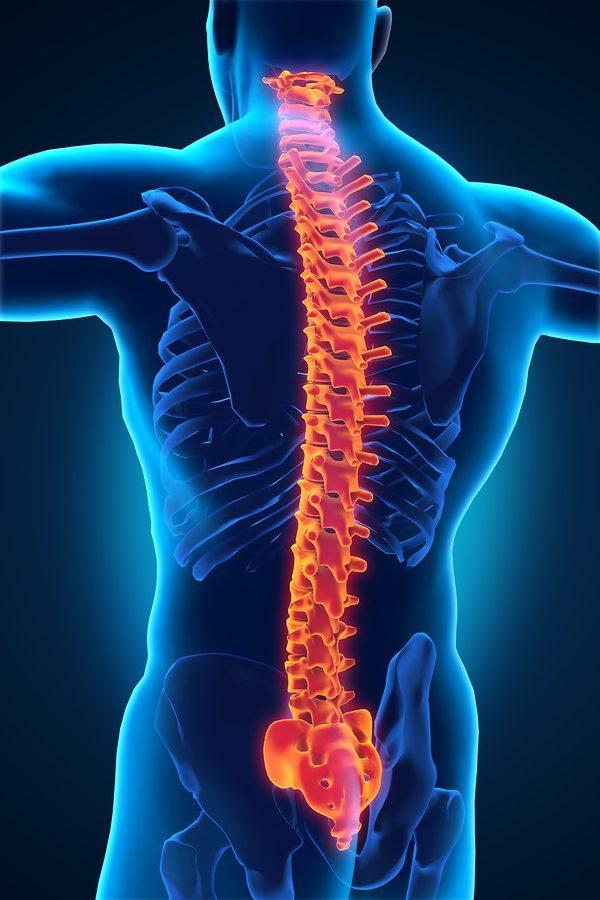 קיבועים בעמוד השדרה