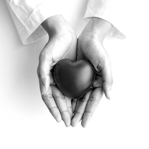 מרכז הלב